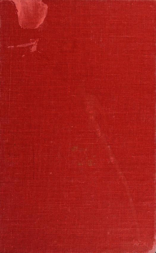 American poetry by Mutlu Konuk Blasing