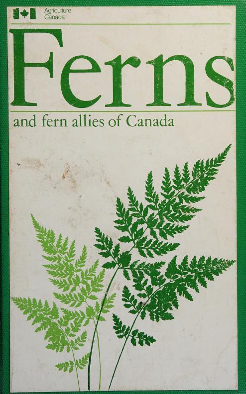 Ferns and fern allies of Canada by William J. Cody